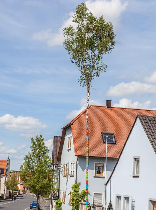 Willkommen-im-bunten-Stammheim-9