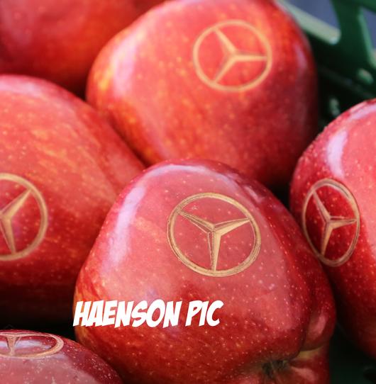 Äpfel-mit-Mercedes-Benz-logo