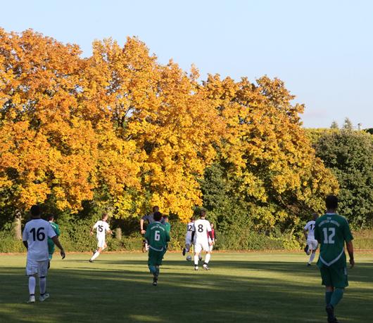 Fussballn-im-Herbst