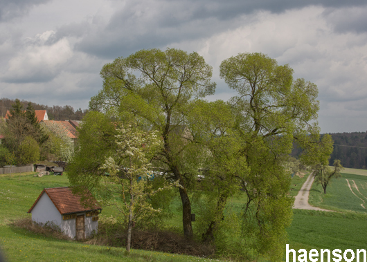 Blick-auf-Kehlingsdorf