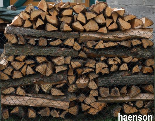 Ein-Ster-Holz-im-Steigerwald
