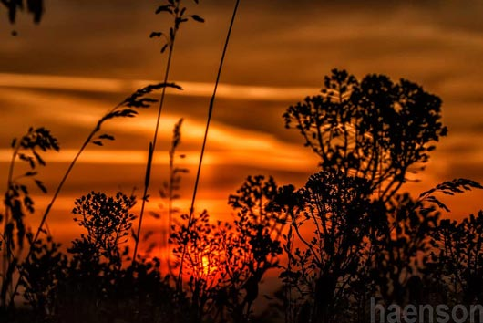 Sonnenaufgang-Kitzingen