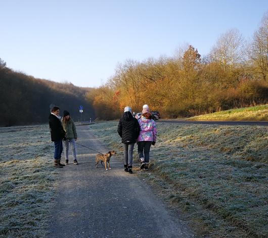 Hunde-ausführen-am-Tierheim-Kitzingen-Kaltensondheimer-Straße